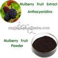 Mulberry extrato de fruta/extrato de amora com 5%, 10%, 25% antocianidinas uv, 10:1