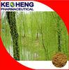 Salix alba Extract Salicin 15% for medicine use