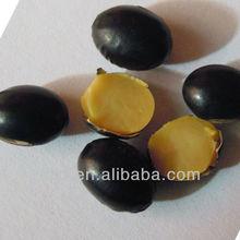 black soybean yellow kernel 2012