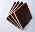 a película marrom enfrentou a madeira compensada de 18mm eucalipto do fabricante em nanning