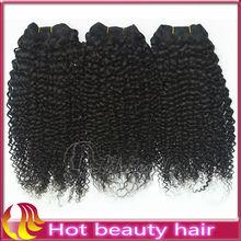 3 Bundles Wholesale Brazilian Hair Kinky Curl 100% Virgin Brazilian Hair