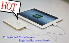 Factory supply 10000mAh for iPad mini backup battery