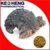 Inonotus obliquus extract/Polysaccharides 10-30% and triterpenoid 2%
