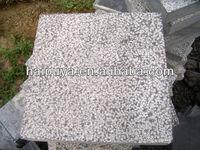 Bush hammered Blue Limestone Floor Tiles