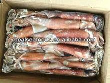 300-500g Frozen Illex Squid