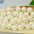 Heißer verkauf! Schale gebohrt perlen