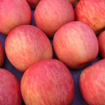 China red fuji apple price
