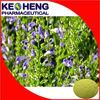 Radix Scutellariae Extract/Radix Scutellariae Extract Powder/Radix Scutellariae P.E