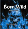 2013 New Born Wild potpourri somke bags 2g/Born Wild aromatic potpourri bags/custom print Born Wild spice bags
