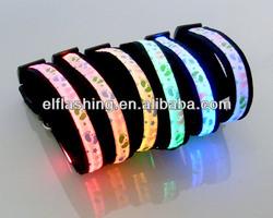 LED dog collar multi color CE/Rohs