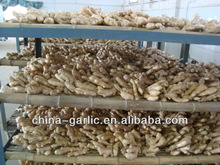 2013 buyer of dry ginger