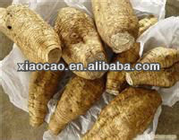 Hot Sell Natural Ashwagandha Extract Powder with 1.5%-2.5% withanolides