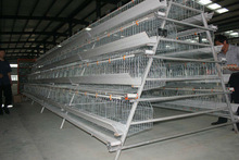 Cheap Bird Farming Cage to breed 20000 Africa layer hens