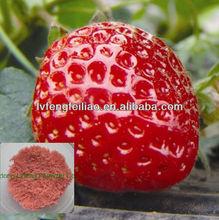drip irrigation fertilizer 13-6-40