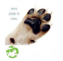china dog toy_pet toys pet dogs