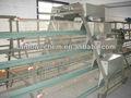 las aves de corral sistema de alimentación automático para pollos de engorde y capa de pollo