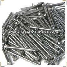 Electro galvanized common wire nail