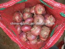 Bulk Fresh Onion of 2013