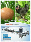 China hot sale stainless egg washer/egg farm equipment 008613823777570