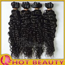Cheap Indian hair deep curly virgin indian hair