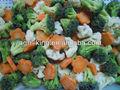 iqf vegetais misturados
