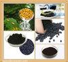 High Quality Blackcurrant Concentrate Powder CAS No. 97676-19-2 purity 30%
