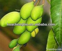 High Quality Irvingia Gabonensis Seed P.E (Flavone)