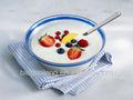 conservantes de yogur
