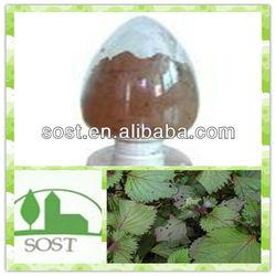 Factory Supply Fruit Of Purple Perilla