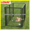 5'x10'x6' hot dipped galvanized welded wire dog kennel