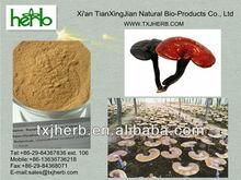 High Quality Lingzhi Extract Powder