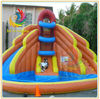 Commercial Inflatable Water Slides/Giant Inflatable Slide for Sale