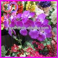 artificial orquídeas phalaenopsis