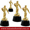 custom shape clear plastic replica wooden trophy parts