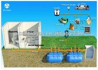 Puxin Cheap Household Biogas Septic Tank