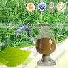 Coleus Forskohlii Extract 10%-98% Forskolin CAS:66575-29-9