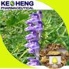 radix scutellaria extract-85% baicalin