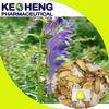 radix scutellariae extract powder-98% baicalin