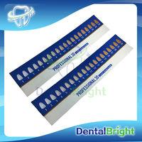 Teeth Whitening/Tooth Whitener/Teeth Bleaching Shade Guide Paper