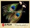 Party Dancing Queen Special Design Peacock Costume Earring