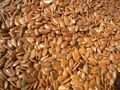 Extracto de semilla de linaza, el estrógeno natural