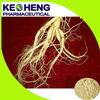 Supply 100%Natural High Quality Water Soluble Ginseng Extract