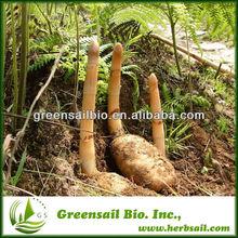 GMP&ISO9001,Gastrodin 80%,Gastrodin Gastrodia Tuber Extract