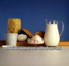 Food preservatives in dairy products