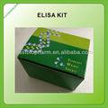 Frango tiroxina, t4 kit de elisa