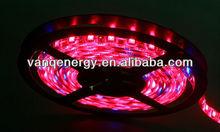 2013hot sale!!customized led strip grow lights flexible red660,blue460nm DC12v amber flexible 5050 waterproof walmart led lights