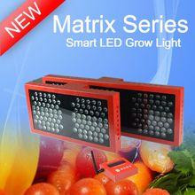 2013 NEW Matrix mega powerful 90 watt led grow lights,looking for distributor