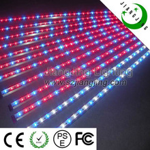 blue and red led grow lights good advanced led grow light with CE ROhS