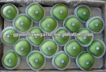 latest green fresh apple