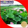 Chinese herbal weight loss natural nelumbo nuciferine